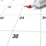 12 Months Of Career Ideas